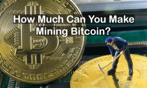 How Much Can You Make Mining Bitcoin Bitcoinvox -
